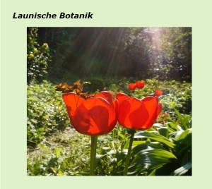 Vorlage Launische Botanik